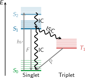 Manual sharc20 figure 11 jablonski diagram showing the conceptual photophysical processes straight arrows show radiative processes absorption h fluorescence f ccuart Image collections